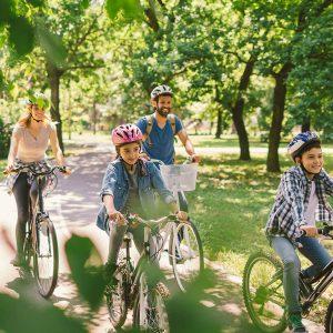 Bikes_600