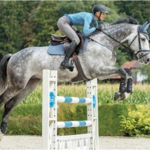 HorseSports_BG