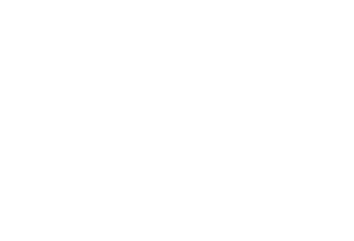 ABS Automotive Service