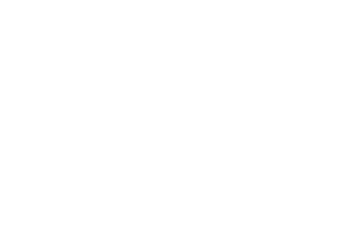 Bricksmegastore Logo Buy Now Pay Later