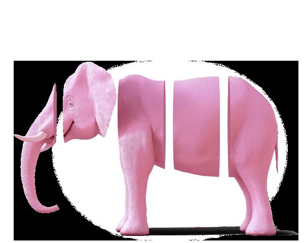 humm elephant image