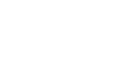 Little Eedie Logo Buy Now Pay Later