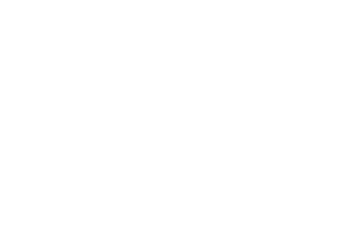Rising Sun FPV Logo Buy Now Pay Later