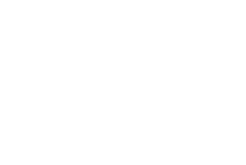 Secure Max Security Buy Now Pay Later