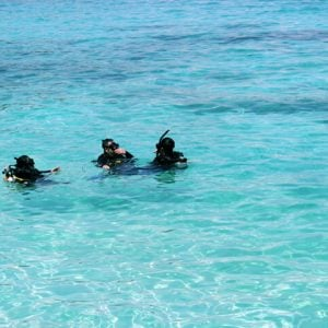 Camping & Outdoor, Beach, Snorkel, Scuba Dive, Swim, Buy Now Pay Later with humm