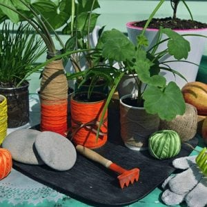 Gardening Store Buy Now Pay Later with humm