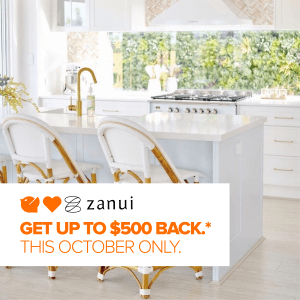 Zanui-hero (Custom)