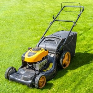 lawn-mowers-category