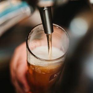 Beer Shark humm