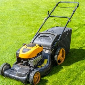 Lawn Mowers Category